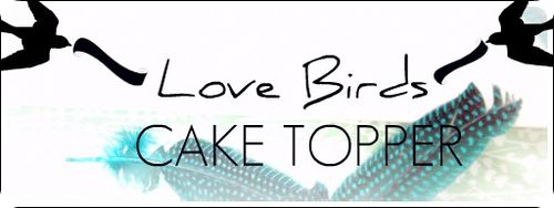 DIY Love Bird Cake Toppers 16